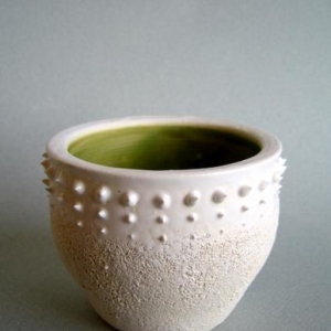 Urchin Cup 2